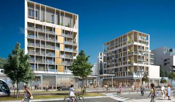 Bordeaux programme immobilier neuve « Dédicace - Ginko »