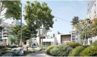 Bordeaux programme immobilier neuve « Dédicace - Ginko »  (2)