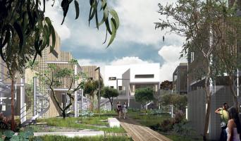 Le Taillan-Médoc programme immobilier neuve « Botanik »  (2)