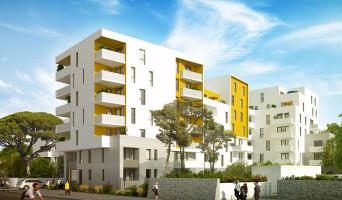 Montpellier programme immobilier neuve « Le 216 »