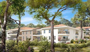 Toulon programme immobilier neuve « Château Rose »