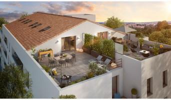 Toulouse programme immobilier neuve « Hoya & Clivia »  (3)