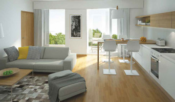 Clermont-Ferrand programme immobilier neuve « Grand Ecran »  (2)