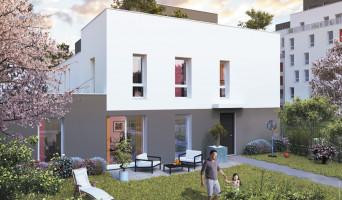 Villeurbanne programme immobilier neuve « Octavie »  (2)