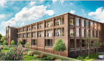 Roubaix programme immobilier neuve « Imag'in »
