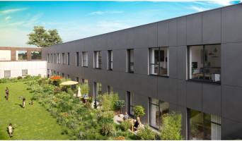 Roubaix programme immobilier neuve « Imag'in »  (2)