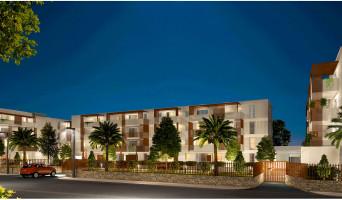Baillargues programme immobilier neuve « Domaine Des Lauriers »  (2)