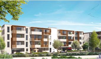 Baillargues programme immobilier neuve « Domaine Des Lauriers »  (5)