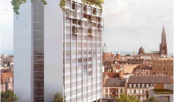 Strasbourg programme immobilier neuve « La Canopée »  (2)