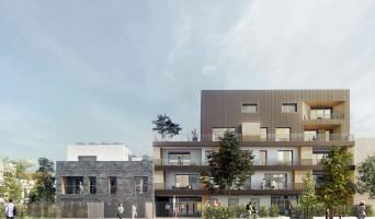 Chevilly-Larue programme immobilier neuve « La Venelle Des Cerisiers »  (2)