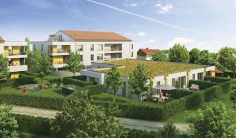 Toulouse programme immobilier neuve « Lautrec »  (2)