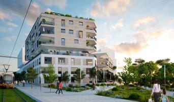 Montpellier programme immobilier neuve « Carré Vendôme »  (2)