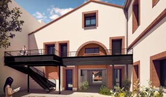 Toulouse programme immobilier neuve « Le Conti »  (2)