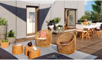 Massy programme immobilier neuve « Les Ginkgos - Canopée »  (3)