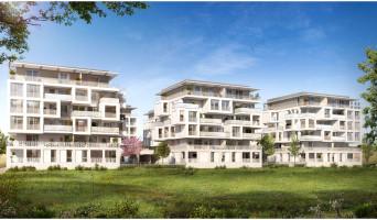 Castelnau-le-Lez programme immobilier neuve « Cosmopoly » en Loi Pinel  (2)