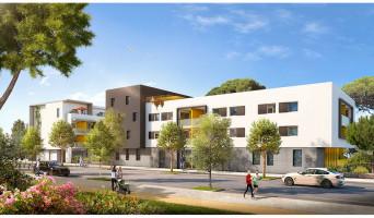 Montpellier programme immobilier neuve « Cista Nova »  (2)