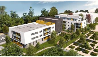 Montpellier programme immobilier neuve « Cista Nova »  (3)