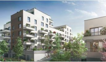 Toulouse programme immobilier neuve « ID'Halles » en Loi Pinel  (2)