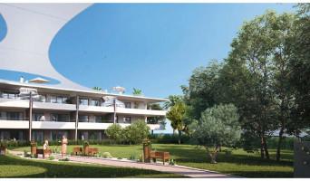 Villeneuve-Loubet programme immobilier neuve « Pearl Beach » en Loi Pinel  (3)