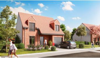 Bauvin programme immobilier neuve « Le Domaine des Vergers »  (4)