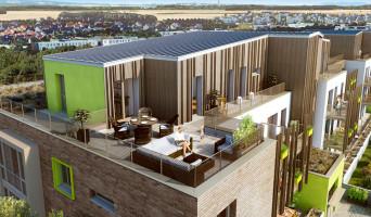 Amiens programme immobilier neuve « Le Carré des Vignes »  (2)