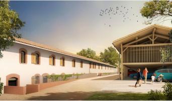 Pin-Balma programme immobilier neuve « Le Domaine du Pin »  (2)