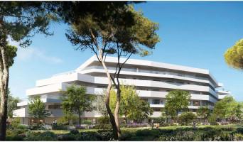 Marseille programme immobilier neuve « White & Sea »  (2)