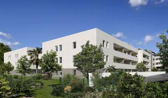Castelnau-le-Lez programme immobilier neuve « Programme immobilier n°215168 »  (2)