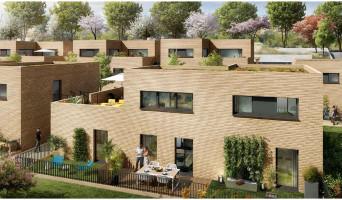 Montrabé programme immobilier neuve « Art'Boréa »  (2)
