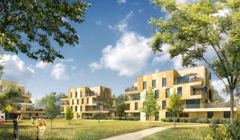 Cornebarrieu programme immobilier neuve « Angustifolia »