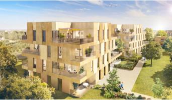 Cornebarrieu programme immobilier neuve « Angustifolia »  (2)