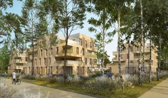 Cornebarrieu programme immobilier neuve « Angustifolia »  (3)