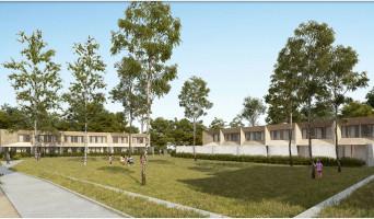 Cornebarrieu programme immobilier neuve « Angustifolia »  (4)