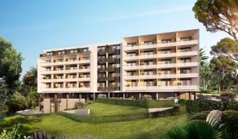 Cannes programme immobilier à rénover « Cannes Horizons » en Déficit Foncier  (2)