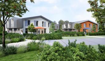 Estaires programme immobilier neuve « Le Clos Des Tulipes »  (3)