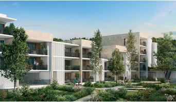 Bruges programme immobilier neuve « Riva »  (2)