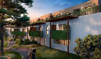 Bruges programme immobilier neuve « L'Angelica »  (2)