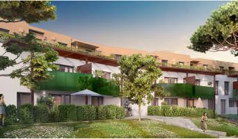 Bruges programme immobilier neuve « L'Angelica »  (3)