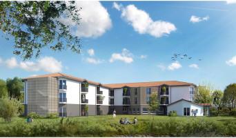 Pessac programme immobilier neuve « L'Osen 2 »  (2)