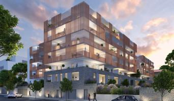 Montpellier programme immobilier neuve « Domaine du Parc »