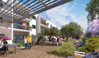 Montpellier programme immobilier neuf « Les Balcons de Montcalm »