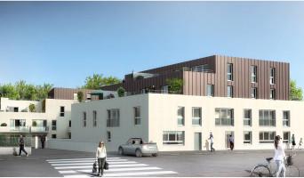 Bois-Guillaume programme immobilier neuve « Veliocasses »