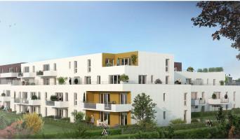 Bois-Guillaume programme immobilier neuve « Veliocasses »  (3)