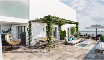 Toulouse programme immobilier neuve « 252 Faubourg 2 »  (2)