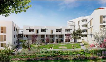Montpellier programme immobilier neuve « Liana » en Loi Pinel  (2)