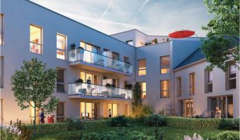 Amiens programme immobilier neuve « L'Avenue »  (2)