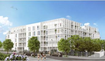Marseille programme immobilier neuve « Calablue » en Loi Pinel  (2)