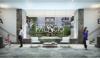 Nîmes programme immobilier neuve « Carré Palascio »
