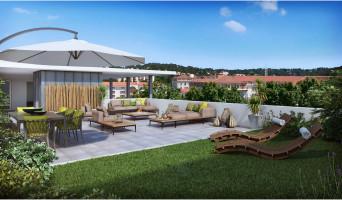 Nîmes programme immobilier neuve « Carré Palascio »  (3)