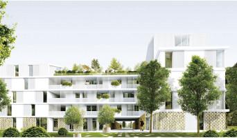 Marseille programme immobilier neuve « Le Cèdre Blanc »  (2)